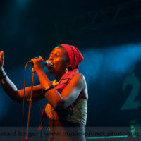 20130602-Jaqee-Africa-Festival-Wuerzburg-2013-©-Gerald-Langer_39_IMG_2722