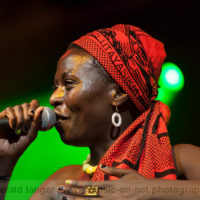 20130602-Jaqee-Africa-Festival-Wuerzburg-2013-©-Gerald-Langer_49_IMG_2733