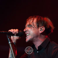 Billy_Talent_Stadthalle_Fuerth_2013-©-Gerald-Langer_19