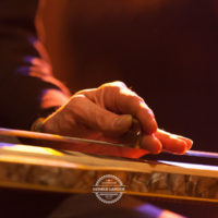 Daantje-and-the_Golden_Handwerk_Posthalle_Wuerzburg_2012-©-Gerald_Langer_15